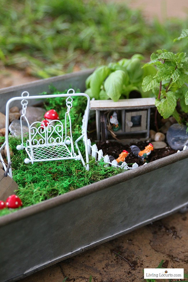 Tiny Chicken Coop. An Herb Fairy Garden is a fun container garden for your kitchen! Easy tutorial for how to make a mini fairy garden for your home. Cute kids craft ideas.